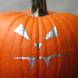 Scary Face by Amanda  Castleman  - Public Holidays Halloween ( gourd, face, painted, faces, pumpkin, vegetable, halloween )