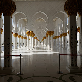 Abu Dhabi Mosque by Ivo Costa - Buildings & Architecture Places of Worship ( temple, mosque )