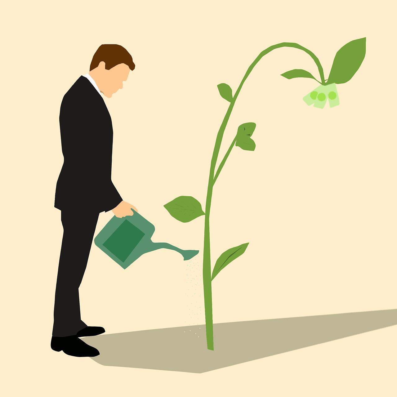 Economia sustentável: entenda o que é e como este conceito pode revolucionar sua empresa