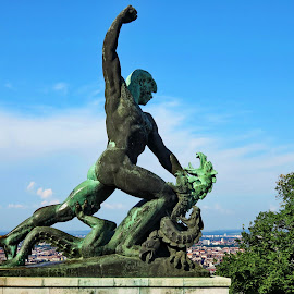 Statue - Citadela,Budapest - Hungary by Andjela Miljan - Buildings & Architecture Statues & Monuments