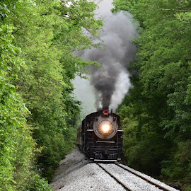 by Brian Baggett - Transportation Trains