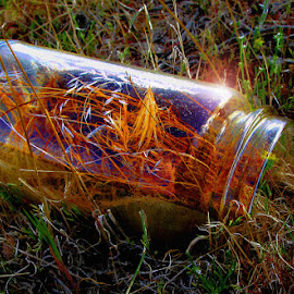 The jar by Megary T - Artistic Objects Glass ( glass jar )