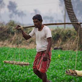 The Farmer by Shafiqul Shiplu - People Street & Candids ( street, candid, people )