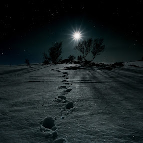 A small step for... by Nikolas Alsterlund - Uncategorized All Uncategorized ( moon, sky, snow, trees, night, nikon, landscape, footsteps, norway )