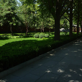 Lama temple gardens by Tay Pratt - City,  Street & Park  Historic Districts