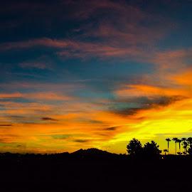 Desert Morning by Don Bates - Landscapes Sunsets & Sunrises ( orange, sunrise, silouette, desert, colors )
