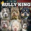 BULLY KING Magazine