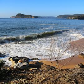 Crashing Waves by Geoffrey Wols - Landscapes Beaches ( water, pearl beach, sand, wave, lion island, surf, rocks )