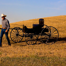 Two cowboys pulling an antique buggy. by Gale Perry - Transportation Other ( palouse, two cowboys hauling it, buggy, golden hillside, sunset, antique, black,  )