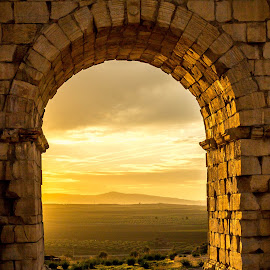 Beautiful arch at sunset in Volubilis, Morocco by Cristi Manea - Buildings & Architecture Public & Historical ( old, via, arab, arch, african, empire, morocco, skyarc, village, tree, rise, bath, africa, mosaicgreen, water, memorial, volubilis, unesco, gate, history, roma, maxima, ruinfamous, blue, column, wallforum, trees, pillar, castle, town, historical, roman, culture,  )