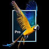 Parallax 3D Effect Wallpaper Pro