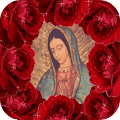 La Virgen De Guadalupe In Rose APK for Ubuntu