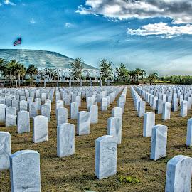Sarasota National Cemetery by Joe Saladino - City,  Street & Park  Cemeteries ( national, cemetery, national cemetery, ampitheatre )