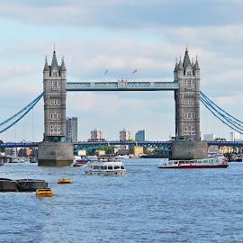 The Queen Bridge by Joatan Berbel - Buildings & Architecture Bridges & Suspended Structures ( parks, cityscape, paysage, bridges, street photography, colorful )