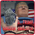 D. Trump of Surgeon Simulator