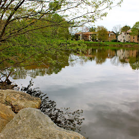 By the lake. by Peter DiMarco - Nature Up Close Rock & Stone ( nature, waterscape, nature up close, stones, rocks )