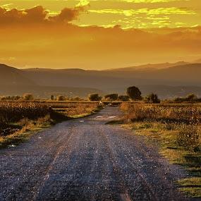 from dusk till dawn by Mislav Glibota - Landscapes Sunsets & Sunrises ( night, lights,  )