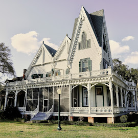 Ardoyne Plantation by Ron Olivier - Buildings & Architecture Homes ( ardoyn plantation )