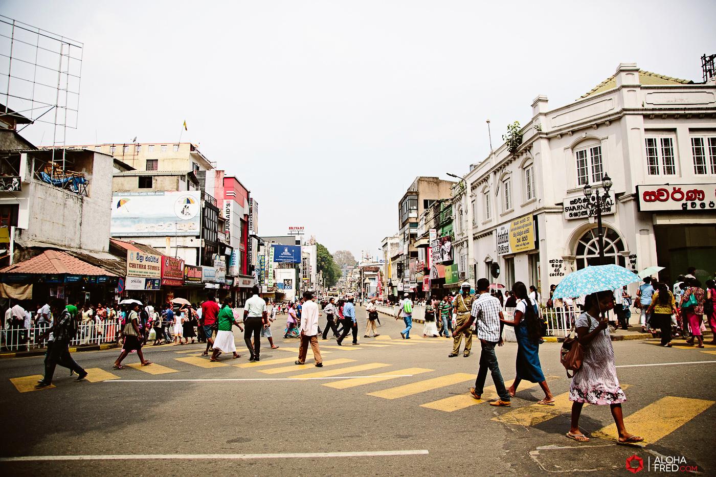 0046 - Sri Lanka - CP1A6868