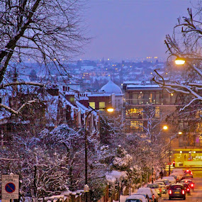 Snowy Night in Hampstead by Joe Proctor - City,  Street & Park  Street Scenes ( skyline, arkwright, london, cars, snow, lamplight, night, glow, dusk, city )