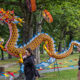They grow on trees there. by Vibeke Friis - City,  Street & Park  City Parks ( chinese lanterns, dragon, hagley park,  )