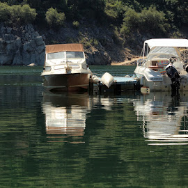 resting by Francisco Cardoso - Transportation Boats ( water, mirror, reflection, green, boats, lake,  )