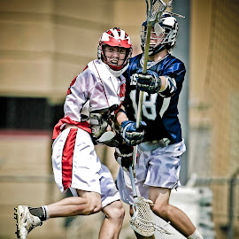 Fighting for postion by Keith Johnston - Sports & Fitness Lacrosse ( field, competing, helmets, players, sticks, game, athlete, lacrosse, athletic, competition )