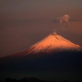 Snowy volcano by Alfredo Garciaferro Macchia - Landscapes Mountains & Hills