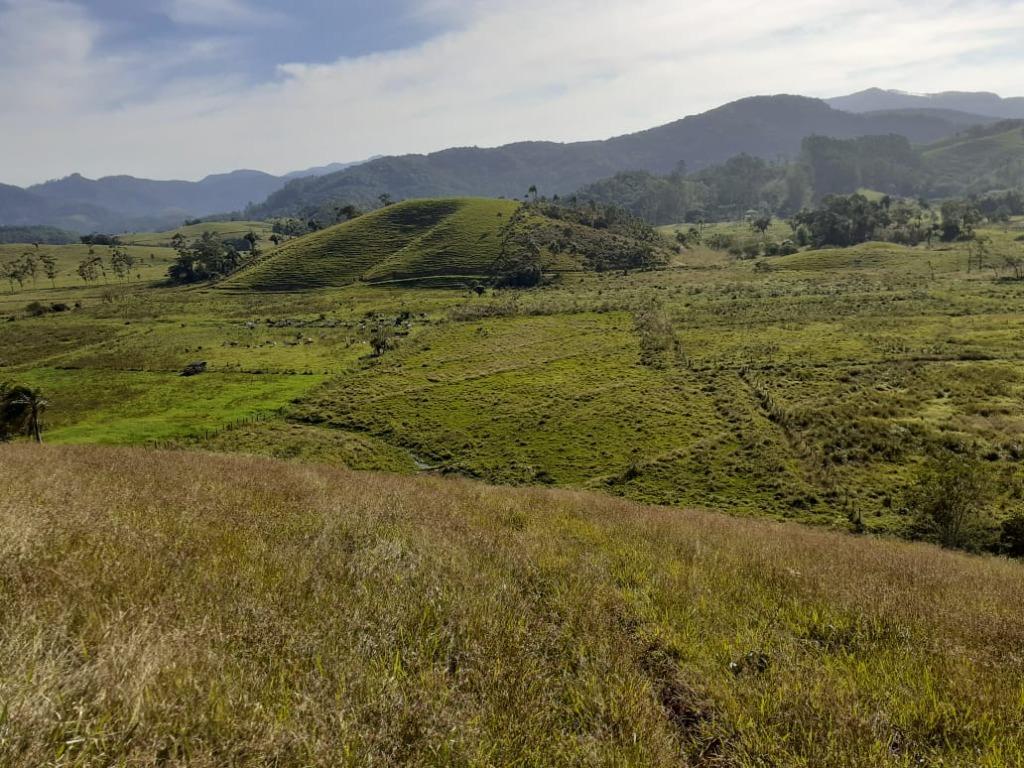 Terreno à venda, 34063 m² por R$ 700.000,00 - Estiva - Biguaçu/SC