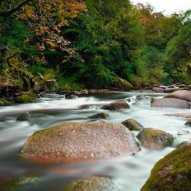 Dartmoor River by Aamir DreamPix - Landscapes Waterscapes ( england, uk, riverside, devon, rivers, dartmoor, river )