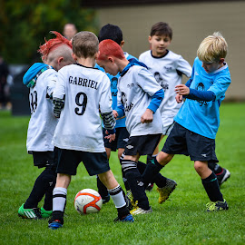 Anyone's Ball by Garry Dosa - Sports & Fitness Soccer/Association football ( tournament, ball, boys, sports, children, game, running, people, soccer )
