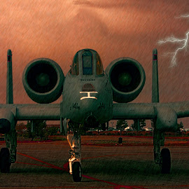 A-10 Thunderbolt II by Tom Anderson - Transportation Airplanes ( riverside airshow, republic a-10 thunderbolt ii, 2012, usaf fighter )