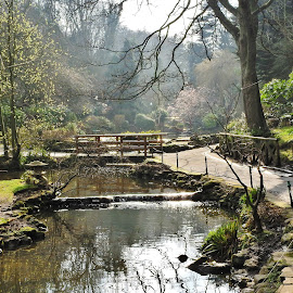 Footpaths to where? by Eloise Rawling - City,  Street & Park  City Parks ( park scene, scarborough, peasholm park, lake )