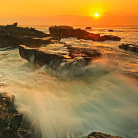 Yellowscape by Goez RIADI - Landscapes Waterscapes