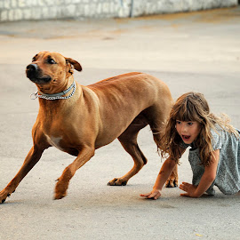 Bodyguard by Andrija Vrcan - City,  Street & Park  Street Scenes ( girl, dog, bodyguard )