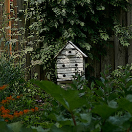 Little House In The Gardens by Howard Mattix - Artistic Objects Other Objects ( birdhouse, gardens, artistic objects, tropical forest )