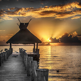 Sunrise by Richard Michael Lingo - Buildings & Architecture Bridges & Suspended Structures ( waterscape, mexico, pier, sunrise, landscape )