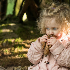 Phoebe and the pinecones  by Tracey Dobbs - Babies & Children Children Candids ( child, portrait )