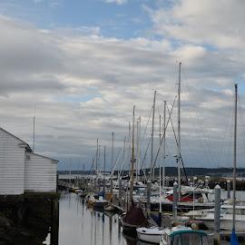 Point Hudson Marine  by Terry Oviatt - Transportation Boats