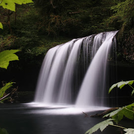 Upper Butte Falls, Oregon by Larry Chipman - Landscapes Waterscapes (  )