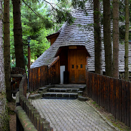 House of the forest by Claudiu Petrisor - Buildings & Architecture Homes ( romania, forest, house, old building, rustic )