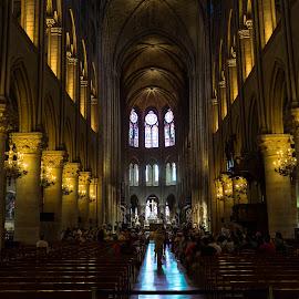 Notre Dame de Paris by Arif Sarıyıldız - Buildings & Architecture Public & Historical ( interior, paris, france, architecture, notre dame de paris, travel photography )