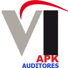 VIPG Auditores