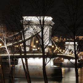 Budapest's Szechenyi Chain Bridge by Night by . Reedd2 - Buildings & Architecture Bridges & Suspended Structures ( hungary, széchenyi chain bridge, budapest, suspension bridge, river danube )