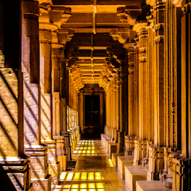 The Path by Ajith Iddya - Buildings & Architecture Architectural Detail ( path, corridor, pillars, historical, shadows,  )