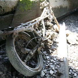 abandoned in the Hudson by Alec Halstead - Transportation Motorcycles