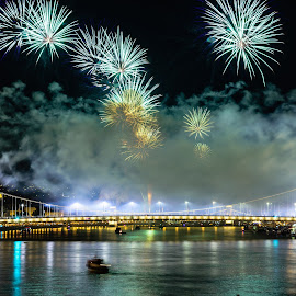 Fireworks by Peter Malmos - City,  Street & Park  Night ( budapest, erzsébet-bridge, fireworks, night, danube )