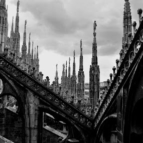 Duomo Milan by Lina Sariff - Buildings & Architecture Other Exteriors