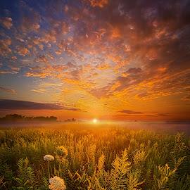 Sometimes Darkness Can Show You The Light by Phil Koch - Landscapes Sunsets & Sunrises ( vertical, arts, fine art, travel, yellow, storm, love, sky, weather, light, u  nity, trending, colors, twilight, art, mood, journey, horizon, rural, portrait, country, dawn, environment, season, horiz  ons, serene, popular, outdoors, lines, natural, hope, inspirational, canon, wisconsin, ray, joy, sunse  t, landscape, sun, photography, life, emotions, dramatic, horizons, inspired, clouds, office, heaven, camera, beautiful, scenic, living, morning, field, natu  re, blue, peace, meadow, summer, beam, sunrise, earth )