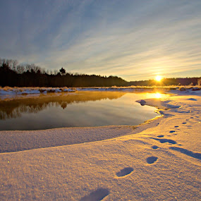 mid winter sunrise by David Pratt - Landscapes Sunsets & Sunrises ( winter, hdr, wide angle, sunrise, landscapes )
